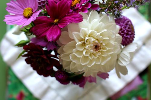 Blueberry_bouquet
