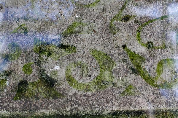 Doormat-art