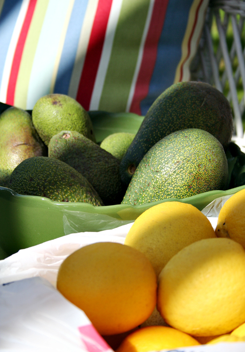 Lemons_and_avocados